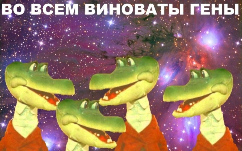 Image result for во всем виноваты гены